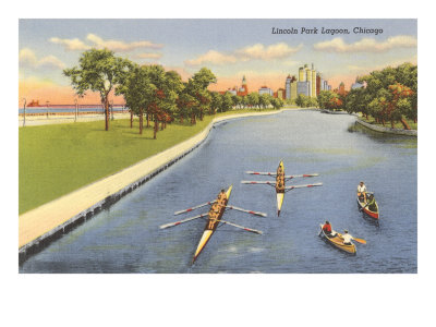 Sculls on Lincoln Park Lagoon, Chicago, Illinois Posters