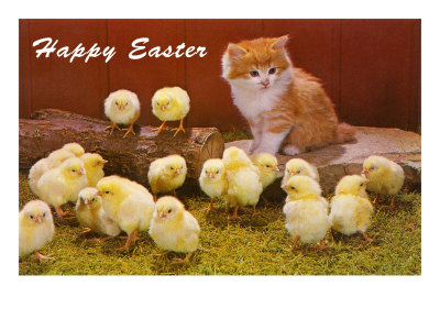Pasen :D Cadeau-topic :D Happy-easter-kitten-and-chicks