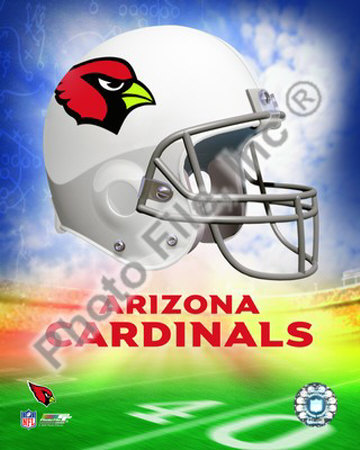 2009 Arizona Cardinals Team Logo Photo