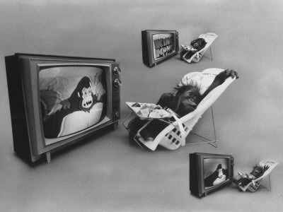An Ape Participating in a Study of Ape Addiction to Tv Premium Photographic Print