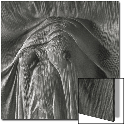 Sheer Waves over Nude Breasts Prints by Monika Brand