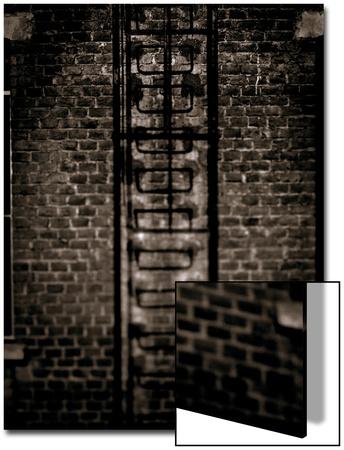 Study of a Ladder Posters by Edoardo Pasero