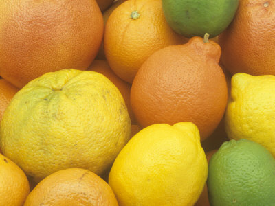 Citrus Fruits. Grapefruit, Tangerine, Ugli, Orange, Lemon, Lime, Tangelo and Clementine Fotografiskt tryck