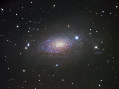 M63, Spiral Galaxy in Canes Venatici Photographic Print by Robert Gendler