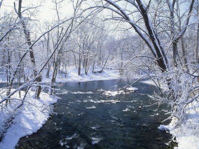 The Winter Territory Jones-adam-snowy-forest-scene-along-the-blue-river-indiana-usa