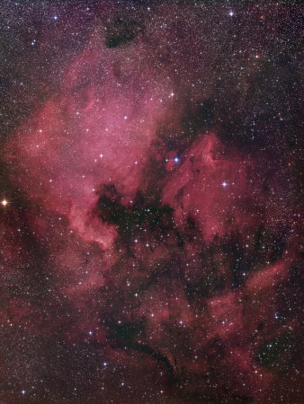 Ngc 7000, the North American Nebula in Cygnus Photographic Print by Robert Gendler