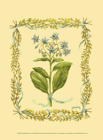 Borage Prints by Wendy Russell