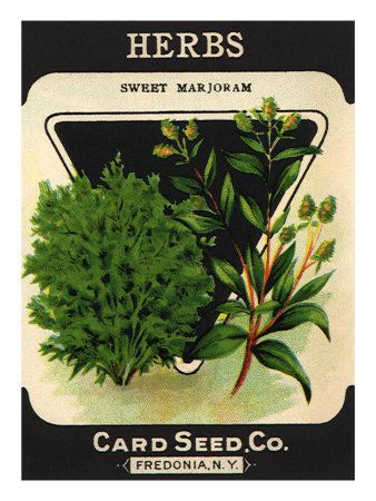 Herbs Seed Packet Giclee Print