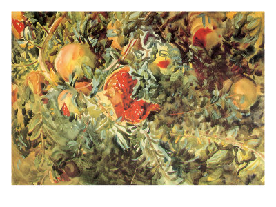 Pomegranates, 1908 Giclee Print by John Singer Sargent