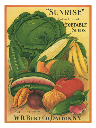 Vegetables Giclee Print