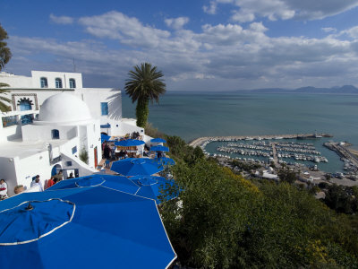 Sidi Bou Said, Near Tunis, Tunisia, North Africa, Africa travel destinations 2015 photo poster by Ethel Davies