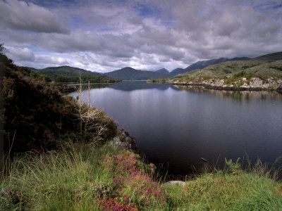 View of Upper Lake, Lakes of Killarney, Ring of Kerry, County Kerry, Munster, Republic of Ireland Photographic Print by Patrick Dieudonne