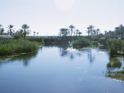 Village of the Marsh Arabs, Taken in the 1970S, Iraq, Middle East Photographic Print by Harding Robert