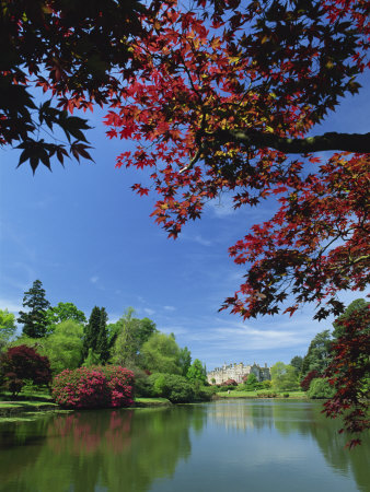 View across Pond to House, Sheffield Park Garden, East Sussex, England, United Kingdom, Europe Photographic Print by Tomlinson Ruth