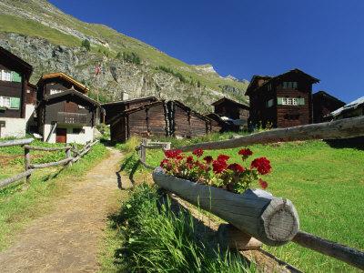 Red Geraniums Beside Path into Village, Zum See, Zermatt, Valais, Switzerland, Europe Photographic Print by Tomlinson Ruth