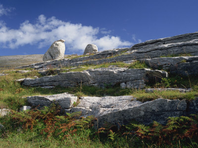 Rock Formations of the Burren, County Clare, Munster, Republic of Ireland, Europe Photographic Print by Rainford Roy