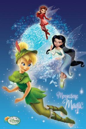 Disney fairies la f e clochette et ses amies posters sur - Fee clochette et ses copines ...