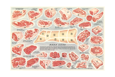 Cuts of Beef Chart Premium Poster