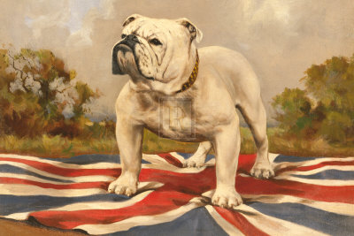 The British Bulldog Art Print