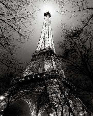 Sa Majesté La Tour Eiffel Art by Antoine Carrara