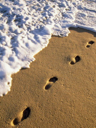 Footprints in the Sand, Near the Water's Edge Photographic Print by Michael Melford