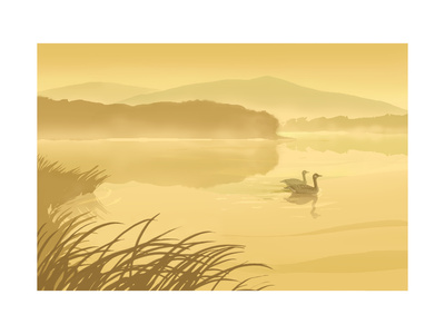 Swan Couple Prints