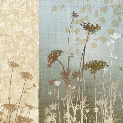 Delicate Fields I Prints by Conrad Knutsen