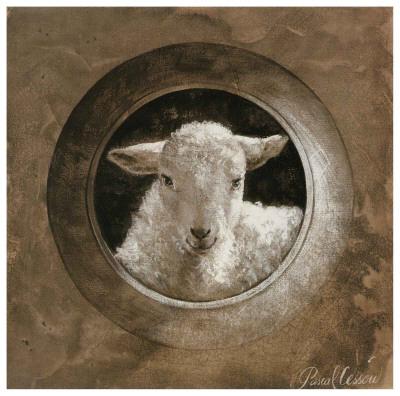 The Sheep Print by Pascal Cessou
