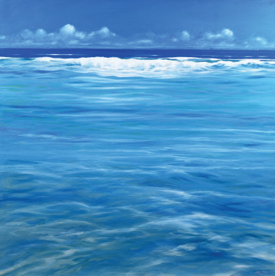 OVER THE REEF Collectable Print by Derek Hare