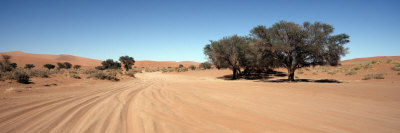 Tire Tracks in an Arid Landscape, Sossusvlei, Namib Desert, Namibia Photographic Print by  Panoramic Images