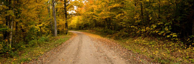 Dirt Road Passing Through a Forest, New Hampshire, USA Photographic Print by  Panoramic Images