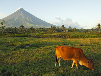 Luzon Island, Bicol Province, Mount Mayon Volcano, Philippines Photographic Print by Christian Kober