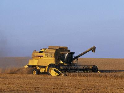 Lincolnshire, Walcot, Combine Harvester Harvesting Wheat, England Fotografisk tryk