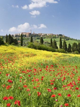 Hill Town Pienza and Field of Poppies, Tuscany, Italy Photographic Print by Nadia Isakova