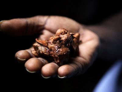 Fermenting Cocoa Beans at the Aqua Izé Cocoa Plant in Saotomé and Principé Photographic Print by Cam...