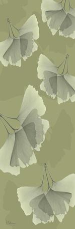 Green on Green Ginko Posters by Albert Koetsier