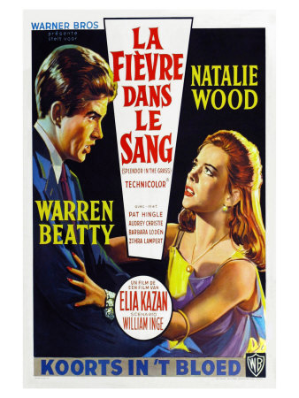 Splendor in the Grass, Belgian Movie Poster, 1961 Posters