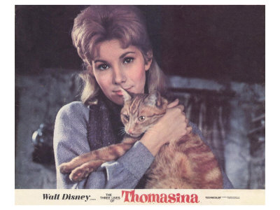 The Three Lives of Thomasina, 1964 Posters