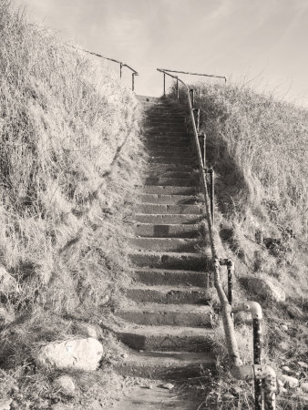 Steps Down to Beach Photographic Print by Kevin Walsh
