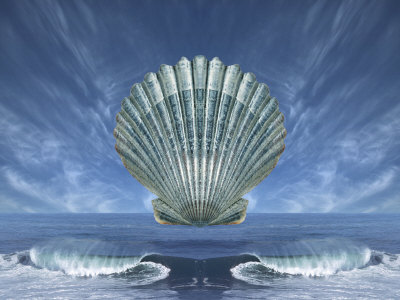 Shell Floating Above Ocean Tide with Blue Sky Photographic Print by Diane Miller