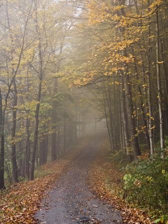 Rural Road in Autumn at Dawn, Vermont Photographic Print by John Churchman