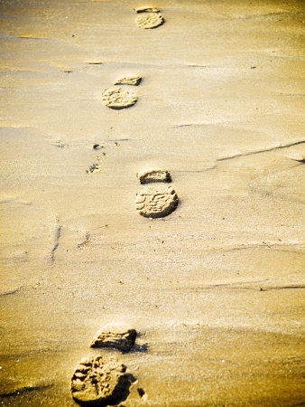 Footprints in the Sand Photographic Print by Kevin Walsh
