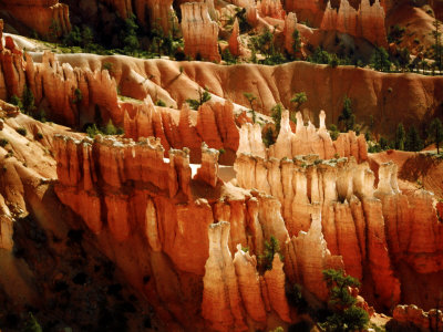 Rock Formations, Bryce Canyon National Park, Utah, USA Photographic Print by Margaret L. Jackson