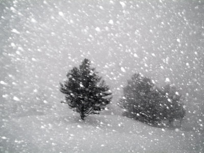 Sudden Snow Flurry Photographic Print by John Churchman