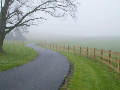 Misty Driveway Photographic Print by John Churchman
