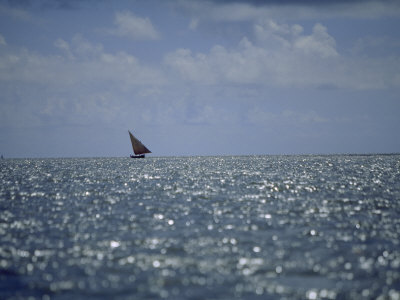 Large Dhow Sails Off the Coast of Pate Island Photographic Print