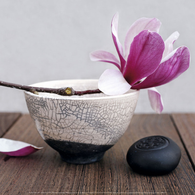Magnolia and Bowl Kunstdruck