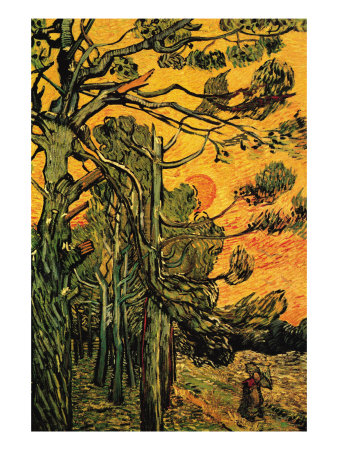 Pine Trees Against a Red Sky with Setting Sun Posters by Vincent van Gogh