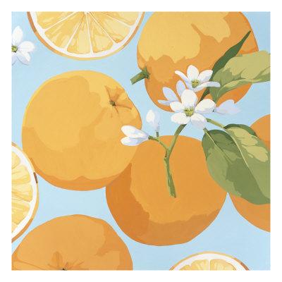 Fresh Oranges Giclee Print by Martha Negley