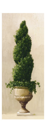 Roman Topiary I Premium Giclee Print by  Welby